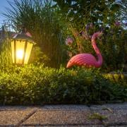 Verlichte tuin met roze flamingo